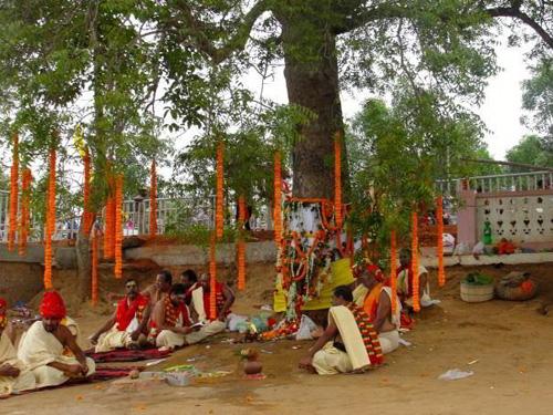 Priester am Neem-Baum, der zum Herzstück der Sudarshana-Statue wurde. Bild credit: Roland Hardenberg
