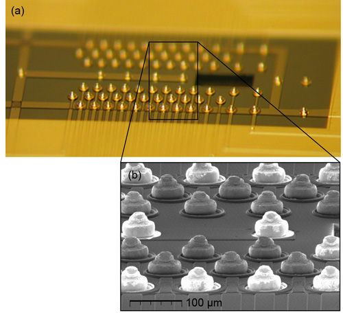 "Photograph and SEM images of the gold studs attached to the interposer—these form the ""ball bonds"" used to connect the trap and interposer chips. Image credit: J. Amini, GTRI and D. Youngner, Honeywell"