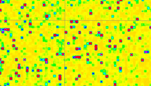 Ausschnitt aus einer Microarray-Synthese unter Verwendung von lichtgesteuerter Chemie (Image copyright: Mark M. Somoza).