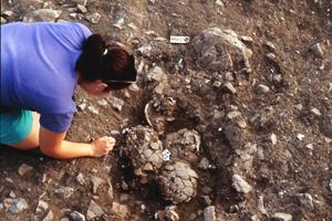 Sonderbestattungen wie dieses Schädelnest aus Kfar HaHoresh/Israel liefern Hinweise auf Bestattungsbräuche der frühen bäuerlichen Gemeinschaften im Nahen Osten. Foto credit: Kfar HaHoresh Archives