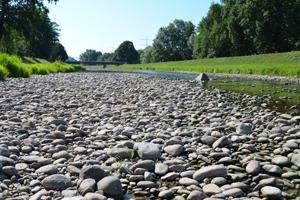 Experten vermuten, dass Trockenheitsphasen in Europa infolge des Klimawandels zunehmen werden. Foto credit: Veit Blauhut/ Hydrologie Universität Freiburg