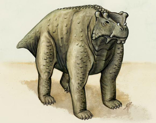 Bunostegos akokaensis. About the same size as a cow, this pre-reptile also stood the same way — upright with its legs underneath. It may be the earliest known creature to do so, according to a new study. Drawings/Image credit: Morgan Turner
