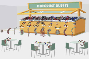 "The Berkeley Lab team examined the diversity of molecules in a biological soil crust (""buffet"") and then used exometabolomics to study how bacteria isolated from this soil deplete (""eat"") specific molecules. This is analogous to looking at how the buffet is changed after each type of bacteria has eaten its fill. They found that these isolates each target a small and largely non-overlapping fraction of the available molecules. This suggested to the researchers that co-localized microbes avoid eating each other's lunch. (Art credit: Zosia Rostomian, Berkeley Lab)"