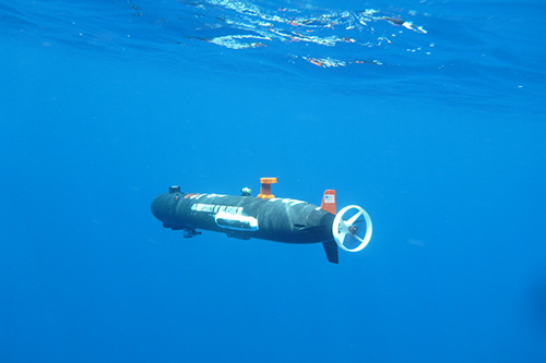 University of Delaware researchers are using underwater robotics to better understand foraging competition between Adelie and Gentoo penguins.  Photos courtesy of Chris Linder and the University of Delaware