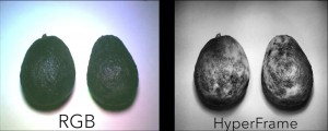 HyperFrames taken with HyperCam predicted the relative ripeness of 10 different fruits with 94 percent accuracy, compared with only 62 percent for a typical (RGB) camera. Image credit: University of Washington (Click image to enlarge)