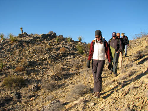 "Michelle Stocker, a research scientist at Virgina Tech, leading a hike to a fossil dig site in West Texas. She conducted her research on the ""Lone Star"" lizard while earning her Ph.D. at The University of Texas at Austin's Jackson School of Geosciences. Photo credit: Chris Kirk"