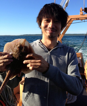 UChicago postdoctoral scholar Tetsuya Nakamura found in his research that repurposed genes are responsible for the unique fins of fish like skates (pictured) and rays. Image credit: University of Chicago