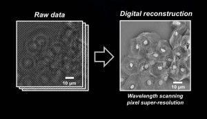 Raw data is transformed into the pixel super-resolution image. Image credit: Ozcan Lab (Click image to enlarge)