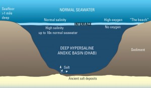 Deep Hypersaline Anoxic Basins, or DHABs, are lakes of ultra-salty, no-oxygen water more than a mile below the surface of the ocean. They are some of the most extreme environments on Earth. Illustration by Jack Cook, Woods Hole Oceanographic Institution (Click image to enlarge)