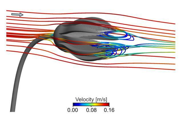 Computersimulationen: Der Transport von Plankton-Teilchen in die Filtervorrichtung des Kelchmodells wird dargestellt. Abbildung credit: Dynowski et al.