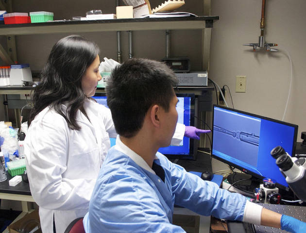 Jenny Jiang, assistant professor of biomedical engineering, and her team have invented a new technique, called iTAST, to study T-cells. Photo credit: Cockrell School of Engineering