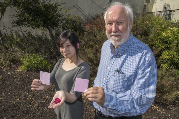 Berkeley Lab researchers Sharon Chen and Paul Berdahl hold up their prototype coating made from ruby powder and show synthetic ruby crystals used in early tests. (Photo credit: Marilyn Chung/Berkeley Lab)