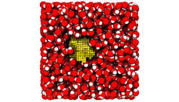 Momentaufnahme einer Simulation von Blasenbildung in Wasser unter Zugspannung. Durch das Wachsen einer Dampfblase (gelb) in Wasser (rot-weiß) geht das System von der flüssigen Phase in den Dampf über (Image copyright: Georg Menzl, Universität Wien).