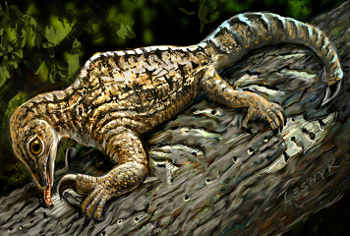 In this illustration set 212 million years ago in what is today New Mexico, a Drepanosaurus rips away tree bark with its massive claw and powerful arm. (Painting by Victor Leshyk)