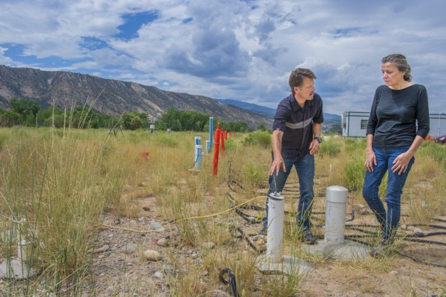 Ken Williams (left) and Jill Banfield at the Watershed Function Scientific Focus Area site near Rifle, Colorado, where research by her team has doubled the number of known bacterial groups. (Image credit: Berkeley Lab, Roy Kaltschmidt)
