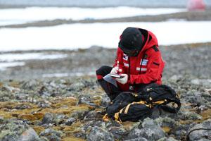 Der Moosforscher Hyoungseok Lee in der Antarktis. Foto credit: KOPRI