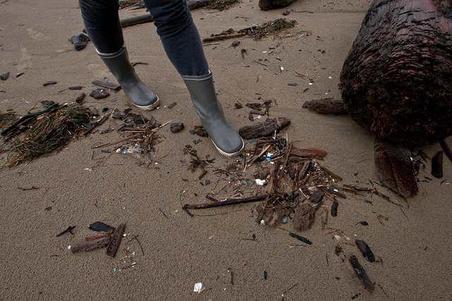 Welche Gefahren Mikroplastik in der Umwelt bewirkt ist zum Gutteil noch nicht bekannt (Image credit: Laura (Source: Flickr)