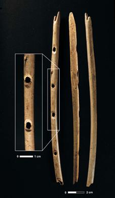 So sahen die Instrumente aus: Diese nahezu komplette Flöte aus einem Gänsegeierknochen wurde bereits 2008 in der Hohle Fels-Höhle gefunden und ist im Urgeschichtlichen Museum Blaubeuren ausgestellt. Foto credit: H. Jensen / Universität Tübingen