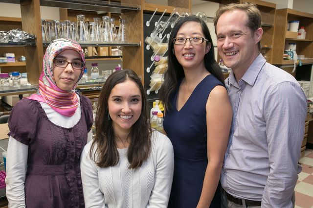 UCLA's Elif Tekin, Casey Beppler, Pamela Yeh and Van Savage are gaining insights into why certain groups of three antibiotics interact well together and others don't. Image credit: Reed Hutchinson/UCLA
