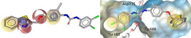 3D-Struktur von I-12 links im Bild im FLAP-Pharmakophormodell und rechts im sEH-Pharmakophormodell, das in der 3D-Bindetasche des Enzyms liegt. Die farbigen Kugeln und Pfeile stellen das Pharmakophormodell dar. Sie codieren für die Aktivität wichtige Wechselwirkungen mit FLAP (links) bzw sEH (rechts). Abbildung credit: Daniela Schuster
