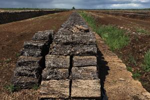 Traditionelle Torfgewinnung zerstört Moorlandschaften. Foto credit: Ralf Reski