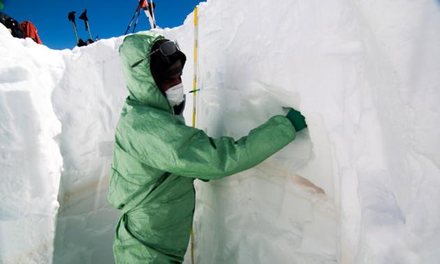 Ganze Gemeinschaften von Mikroorganismen aus der Sahara fanden die Forscher im Schnee und Eis der Alpen. (Image credit: Weil T. et.at. Microbiome 20175:32 CC BY 4.0)