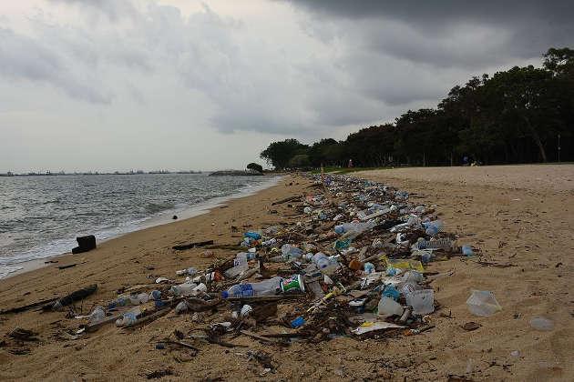 Tonnen von Plastik treiben in den Meeren. Image credit: vaidehi shah (Source: Wikipedia)