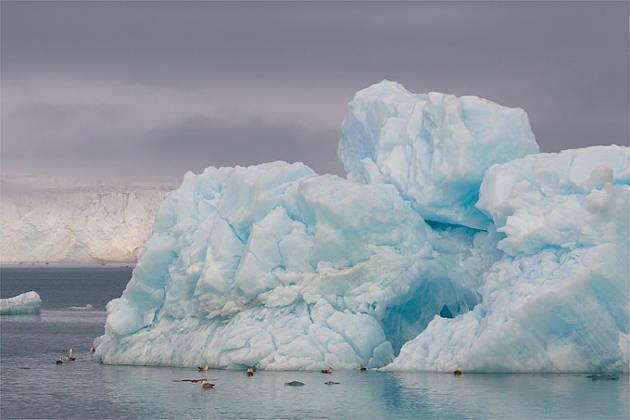 Eisberg vor Spitzbergen – Foto credit: NABU/Christoph Kasulke