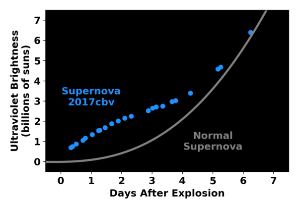 """Smoking gun: Unlike """"regular"""" supernovae, whose change in ultraviolet brightness follows the gray curve, this one increased in brightness faster over the first two days, before slowing down (blue curve). This bump in the light curve likely reflects the slamming of material from the exploding white dwarf into a companion star. (Image credit: Griffin Hosseinzadeh)"""