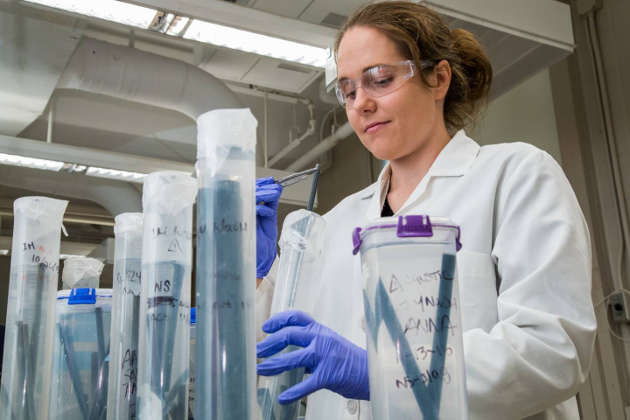 A Princeton research team led by Professor Claire White is helping to develop new materials that work as well as cement but drastically cut carbon emissions related to cement production. Photo by David Kelly Crow