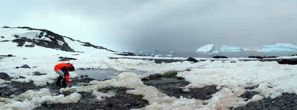 Die Tübinger Geowissenschaftlerin Julia Kleinteich nimmt Süßwasserproben in der Nähe der britischen Forschungsstation Rothera in der Antarktis. Foto credit: Daniel Farinotti