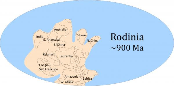 A proposed reconstruction of the supercontinent Rodinia, about 990 million years ago.Image credit:Chao Liu/EarthByte