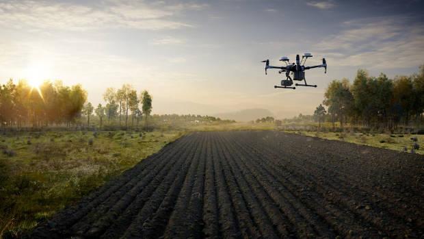 A DJI drone flies over farmland. (Image by Makeshift Studios)