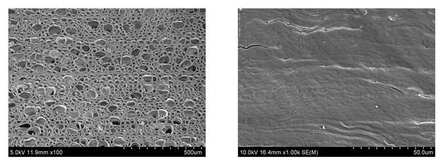 Magnified images of (1) untreated wood and (2) the same wood treated by a new process invented by engineers at the University of Maryland that compresses the natural structures of wood into a new material five times thinner. Image Credit: University of Maryland.