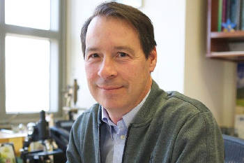 The connection between dietary cholesterol and colon cancer had been known, but research led by Dr. Peter Tontonoz is the first to explain the mechanism behind it. Image credit: UCLA Health