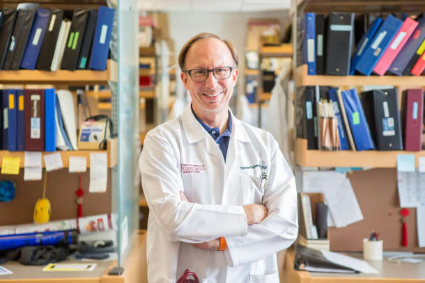 Prof.Thomas Gajewski has found astrong correlation between specific gut bacteria and a clinical response to anti-PD-1 immunotherapy. Image credit: University of Chicago