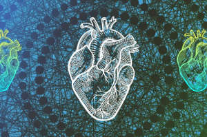 The Trees of Predictors algorithm uses machine learning and 53 data points to address the complex differences among people waiting for heart transplants. Image credit. UCLA Engineering