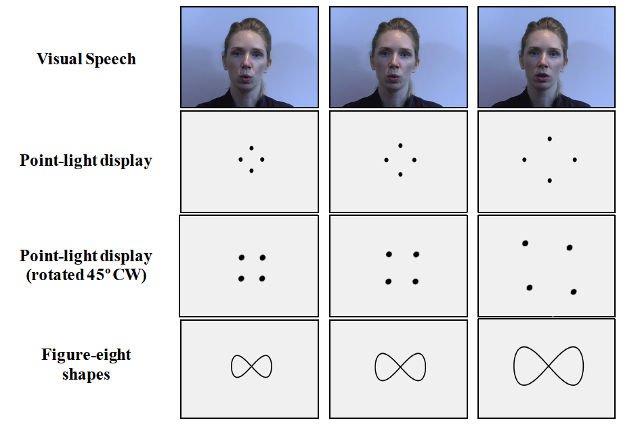 Researchers employed many visual representations of lip motion to see which essential features really mattered. Image credit: Masapollo et. al.