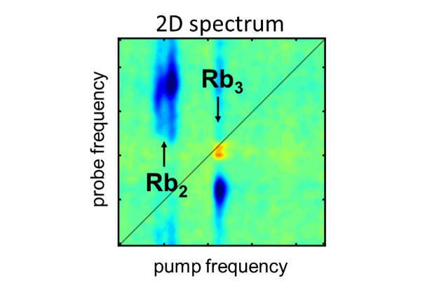 Die 2D-Spektroskopie bildet die lichtinduzierten Reaktionen der Rubidium-Moleküle in verschiedenen Farbspektren ab. Abbildung credit: Lukas Bruder
