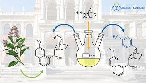 Der Naturstoff Chinin (Bildmitte) und ein neues Arylanalogon (rechts) mit verbesserter Aktivität gegen Malaria-Erreger (Image copyright: Maulide Group).