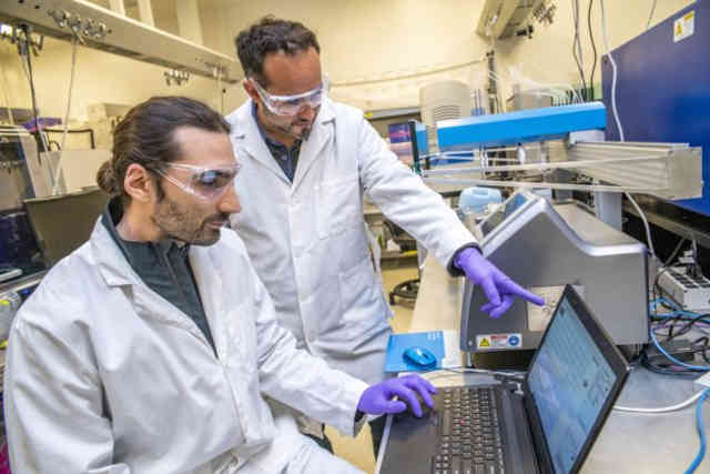 A new approach developed by Zak Costello (left) and Hector Garcia Martin brings the the speed and analytic power of machine learning to bioengineering. (Image credit: Marilyn Chung, Berkeley Lab)