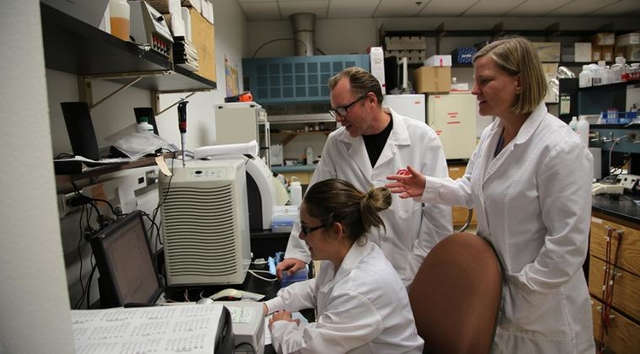 Biosystems engineering researcher Bonnie Hurwitz (right) and associate professor of pharmacology George Watts work with research specialist Candice Clark-Mason in the lab. (Photo credit: Paul Tumarkin/Tech Launch Arizona)