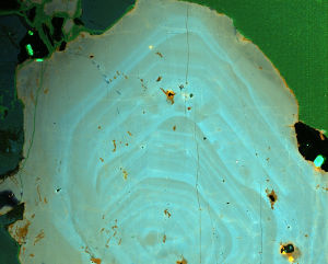 Quartz analysis image courtesy of MichaelAckerson. Half Dome photo above courtesy of NicholasAckerson.