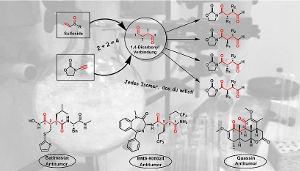 Selektive Synthese von 1,4-Dicarbonylverbindungen mit Sulfoxiden sowie bedeutende Wirkstoffvertreter, die die 1,4-Dicarbonyleinheit enthalten. Image credit: © Nuno Maulide Group